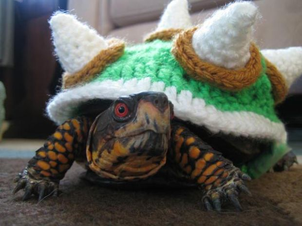 knit-bowser-turtle-shell-1